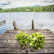 サウナはフィンランド語なのです。北欧ではサウナ文化が古くから広まり、愛されています。 肉体や、精神の浄化ために特別な空間で過ごし、リラックスするのです。